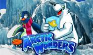 haban-arctic-wonders-thumbnail.jpg