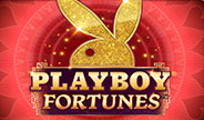 mg-playboy-fortunes-thumbnail