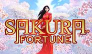 sakura-fortune-thumbnail